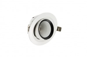 BERGMEN 20W Downlight Enix Pro Move LED Ø145 mm